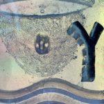 Trauredner, Hochzeitsredner, Trauerredner, Grabredner, Trauerfeier, Friedgarten Mitteldeutschland, Wunschredner, Dr. Tobias D. Höhn, Freier Redner, Redner Leipzig, Redner Halle, Trauerfeier Leipzig, Trauerfeier Halle, Abschied, Bestattung Halle, Flamarium, Tobias Höhn, Wunschrede, Alternative Friedhof, Baumbestattung, Waldbestattung, Seebestattung, Biografie schreiben, Mein Leben, Kunst,